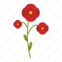 field, flowers, garden, leaf, plant, poppy, wildflowers icon