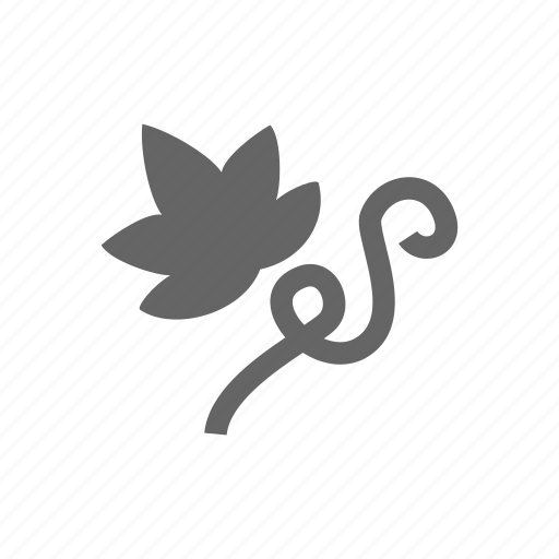 Grape, green, leaf, nature, plant, vine icon - Download on Iconfinder