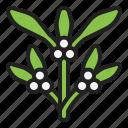 christmas, green, mistletoe, parasite, pest, plants, winter