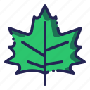 leaf, leaves, plant, winter icon