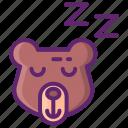 winter, hibernation, sleep, bear
