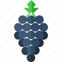 bunch, cluster, fruit, grapes, natural, snack icon