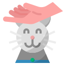cat, cute, kitten, pet, playing with pet icon