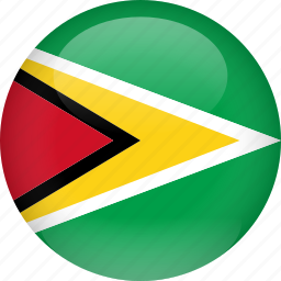 country, flag, guyana icon