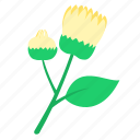 bud, daisy, floral, nature, ornament icon
