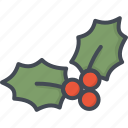 berry, christmas, holiday, xmas icon