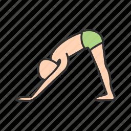 dog, downward, facing, fitness, pose, training, yoga icon