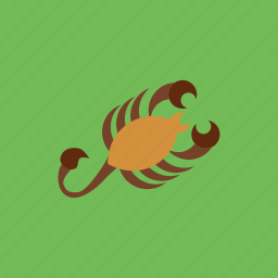 animal, horoscope, scorpio, scorpion, zodiac icon