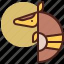 animal, armadillo, farm, pet, ranch icon