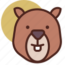 animal, bever, farm, pet, ranch icon