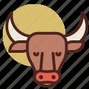 animal, bull, farm, pet, ranch icon