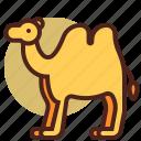animal, camel, farm, pet, ranch icon
