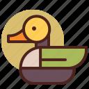 animal, duck, farm, pet, ranch icon