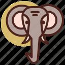 animal, elephant, farm, pet, ranch icon