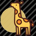 animal, farm, giraffe, pet, ranch icon