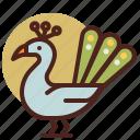 animal, farm, peacock, pet, ranch icon