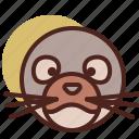 animal, farm, pet, ranch, seal icon