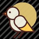 animal, farm, pet, ranch, sparrow icon