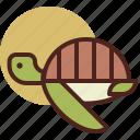 animal, farm, pet, ranch, turtle icon