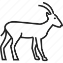 animal, goat, mammal, zoo icon