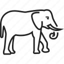 animal, elephant, mammal, zoo icon