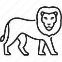 animal, cat, lion, zoo icon