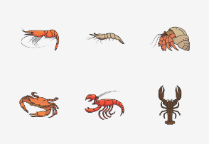 Crustaceans - Colored