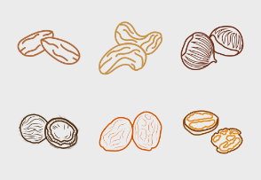 Dry fruits outline colored