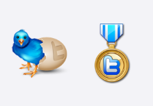 Massive Twitter icon set
